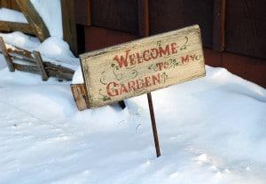 Bienvenu au jardin