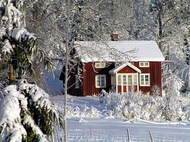 Jardin potager en hiver