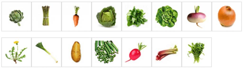Légumes à récolter au mois de mai