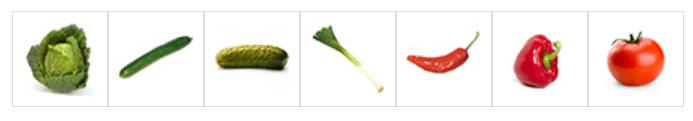 Légumes à repiquer au mois de mai
