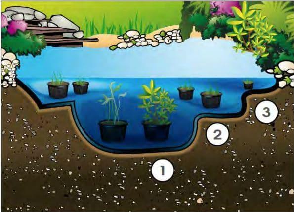 Modèle de bassin de jardin
