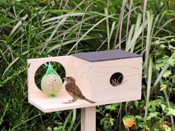 Nichoir et distributeur de nourriture pour oiseaux du jardin