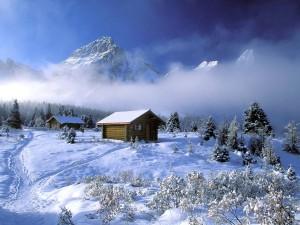 Saison hivernale