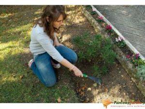 nettoyage à l'aide d'un petit rateau à feuilles