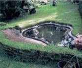 plantations et remplissage du bassin de jardin rigide